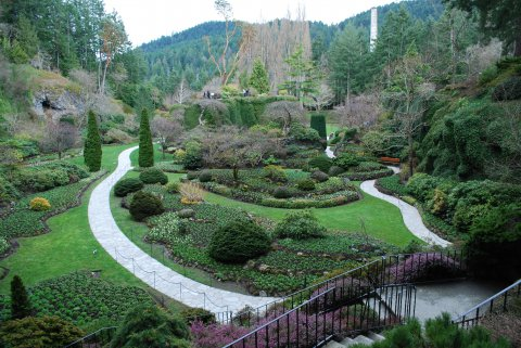 Album Name: Butchart Gardens March 09